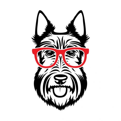 Scottish,Terrier,With,Red,Eyeglasses,Scottie,Dog,Isolated,Vector,Illustration
